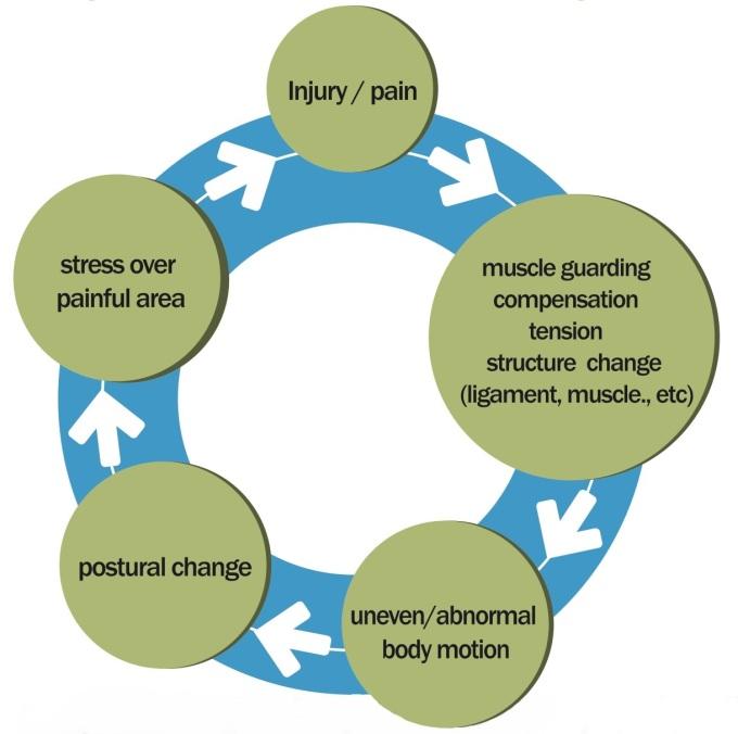 Pain cycle